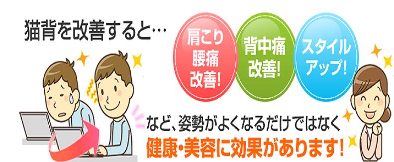 おゆみ野、鎌取駅で肩こり、頭痛、猫背を治したい方はセレネ整骨院鍼灸院